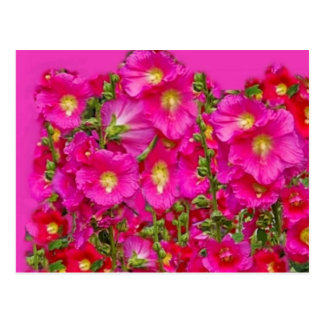 Carte Postale Jardin rose de roses trémière par SHARLES