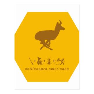 Carte Postale jaune de pronghorn et brown.png