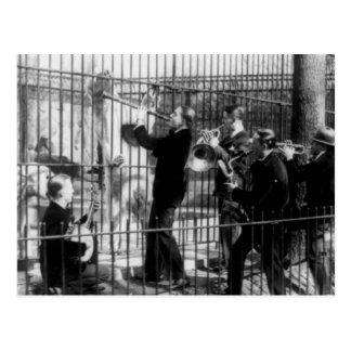 Carte Postale Jazz-band jouant la musique pour les ours