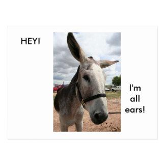 Carte Postale Je suis toutes les oreilles