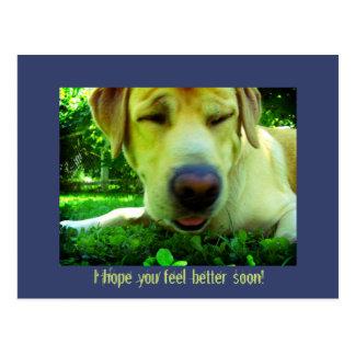 Carte Postale Je vous espère sentir mieux bientôt !