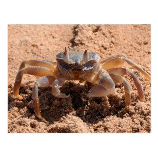 Carte Postale Je vous vois - marchez en crabe à la fin de plage