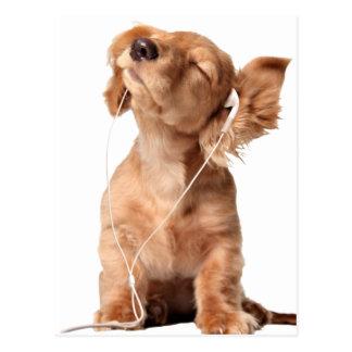 Carte Postale Jeune chiot écoutant la musique sur des écouteurs