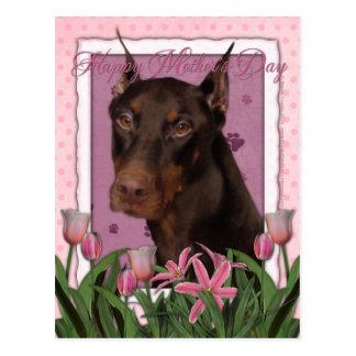 Carte Postale Jour de mères - tulipes roses - dobermann - rouge