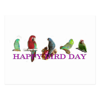Carte Postale Jour heureux d'oiseau