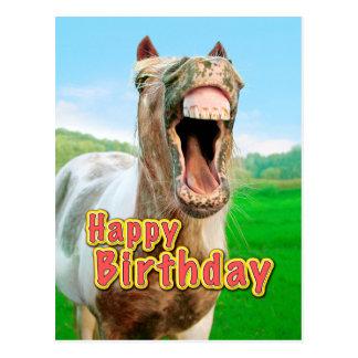 cheval joyeux anniversaire