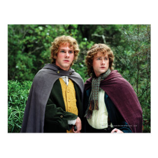 Carte Postale Joyeux et Peregrin