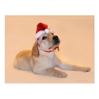 Carte Postale Joyeux Noël - laboratoire jaune