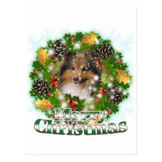 Carte Postale Joyeux Noël Sheltie