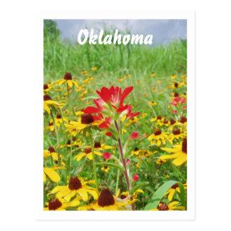 Carte Postale july2007 paintbursh indien, l'Oklahoma