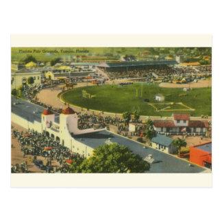 Carte postale juste vintage d'au sol de Tampa la