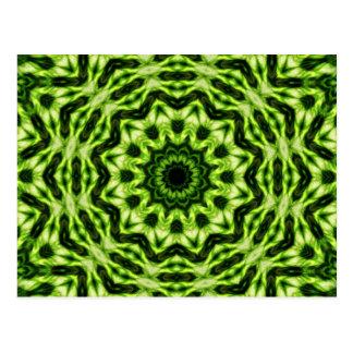 Carte Postale Kaléidoscope de kiwi