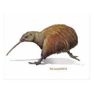 Carte Postale kiwi