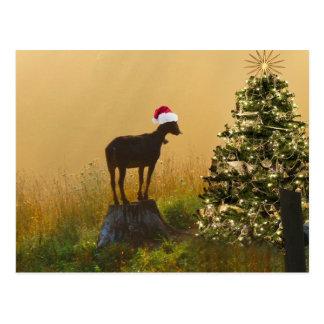 Carte Postale La chèvre solitaire s'émerveille à l'arbre de Noël