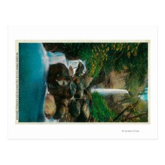Carte Postale La croyance de McCord tombe sur le fleuve Columbia