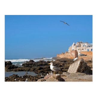 Carte Postale La Médina d'Essaouira et de la côte atlantique