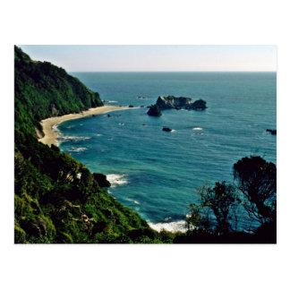 Carte Postale La mer de Tasman du point d'Arnott