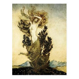 Carte Postale La métamorphose de Daphne dans un arbre