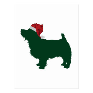 Carte Postale La Norfolk Terrier