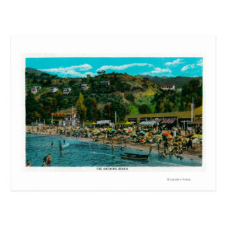 Carte Postale La plage se baignante chez Avalon, île de Catalina