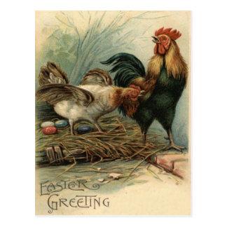 Carte Postale La poule Pâques de coq a coloré le nid peint