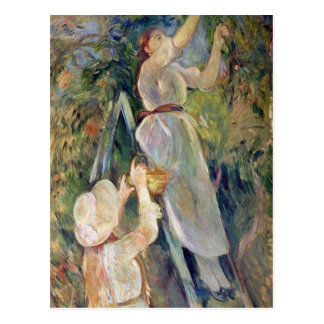 Carte Postale La récolteuse de cerise