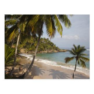 Carte Postale La République Dominicaine, côte du nord, Abreu,
