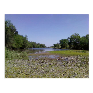 Carte Postale La rivière américaine à Sacramento, CA