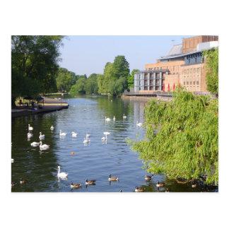 Carte Postale La rivière Avon à Stratford-sur-Avon