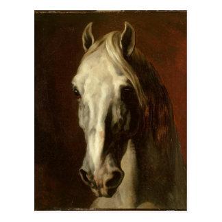 Carte Postale La tête du cheval blanc par Theodore Gericault