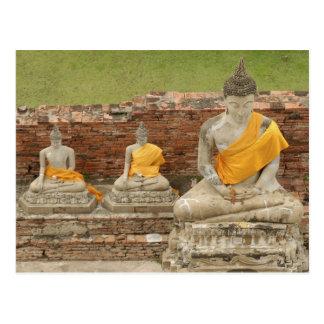 Carte Postale La Thaïlande, Ayutthaya. Statues des buddhas se
