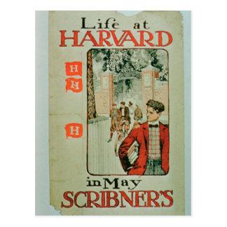 """Carte Postale La """"vie à Harvard"""", publicité par affichage que"""