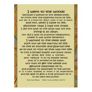 Carte Postale La vie de Walden dans les bois