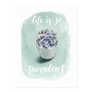 Carte Postale La vie est I succulent