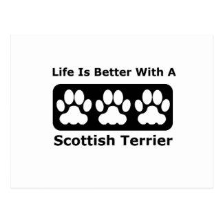 Carte Postale La vie est meilleure avec Terrier écossais