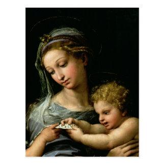 Carte Postale La Vierge du rose, c.1518