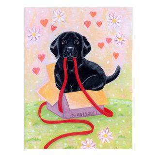 Carte Postale Labrador noir dans la peinture de boîte