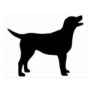 Carte Postale Labrador retriever (dans le noir)