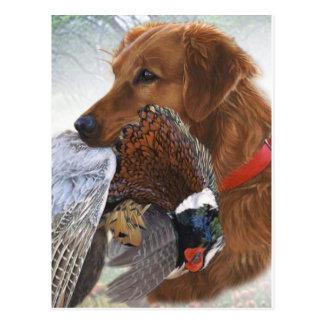 Carte Postale Labrador retriever le chien de gibier à plumes