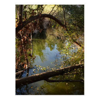 Carte Postale Lac 4 park de canyon de Franklin