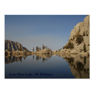 Carte Postale Lac solitaire pine