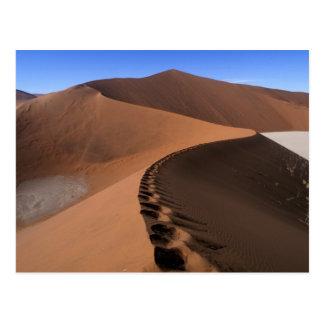 Carte Postale L'Afrique, Namibie, parc national de Namib
