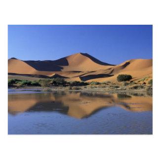 Carte Postale L'Afrique, Namibie, parc national de Namib,