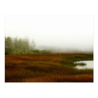 Carte Postale Lagune de Humboldt