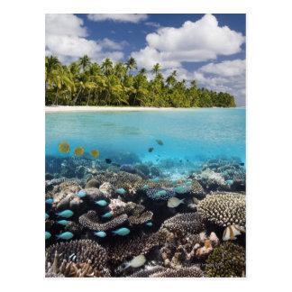 Carte Postale Lagune tropicale dans l'atoll du sud d'Ari dans