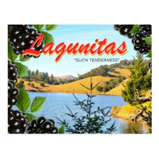 "Carte Postale Lagunitas, ""une telle tendresse"" (Hass, prennent"