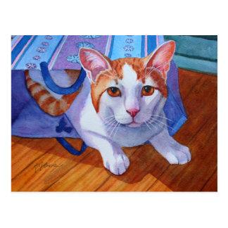 Carte Postale Laissez le chat hors du sac
