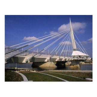 Carte Postale L'Amérique du Nord, Canada, Manitoba, Winnipeg,