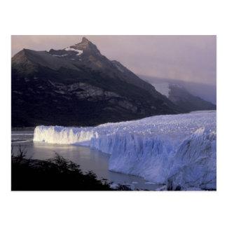 Carte Postale L'Amérique du Sud, Patagonia, Argentine Parque