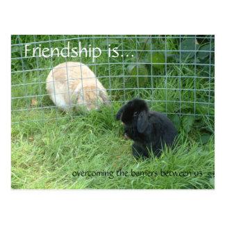 Carte Postale L'amitié est…, surmontant les barrières entre